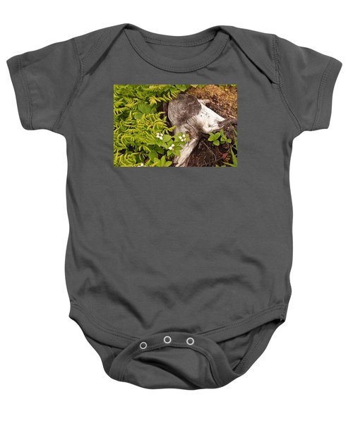 Alaskan Foliage Baby Onesie
