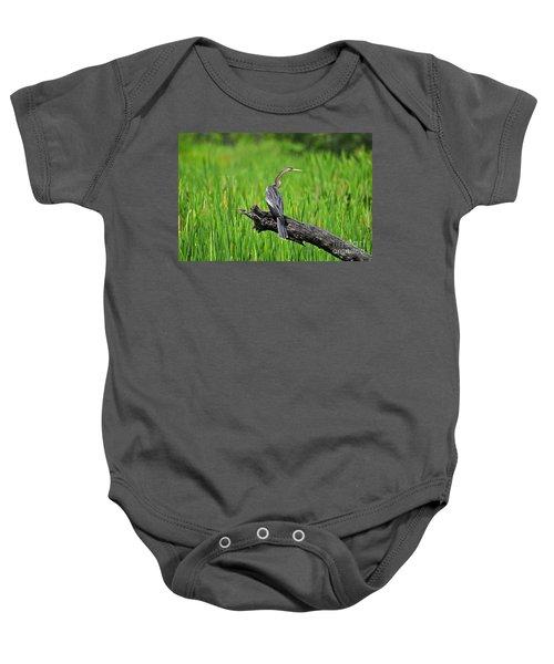 American Anhinga Baby Onesie