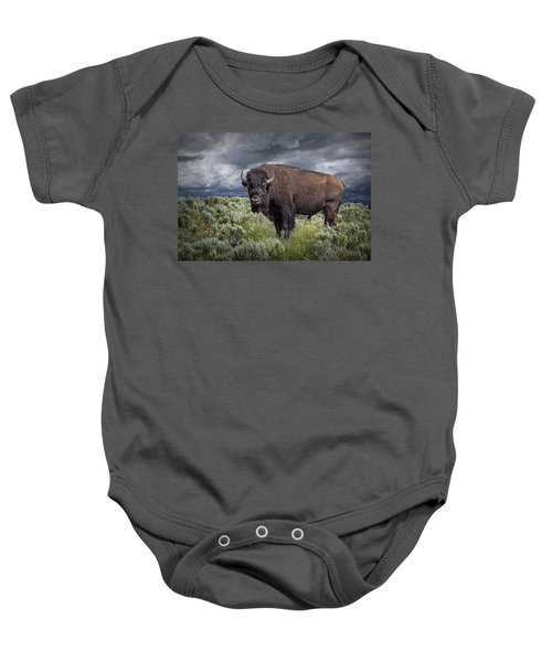 American Buffalo Or Bison In Yellowstone Baby Onesie