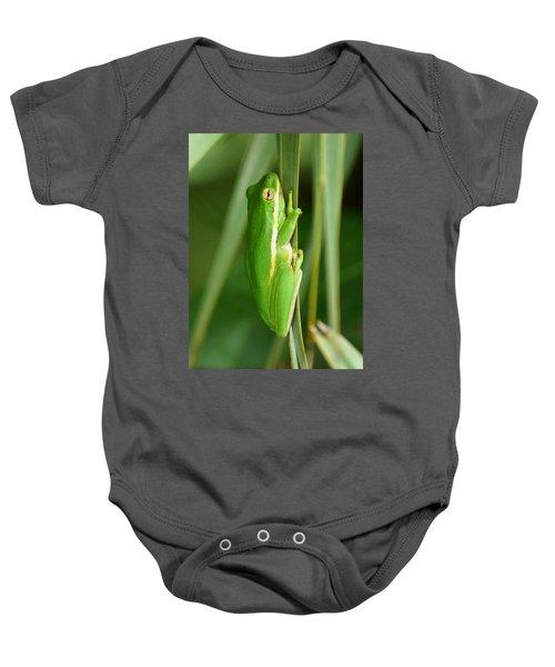 American Green Tree Frog Baby Onesie