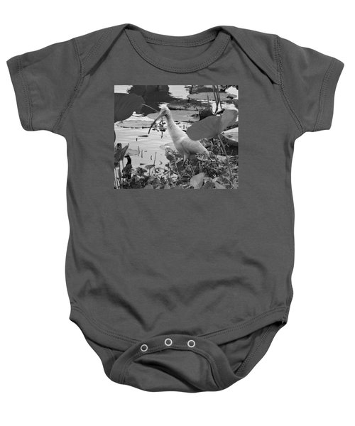 American White Ibis Black And White Baby Onesie by Dan Sproul