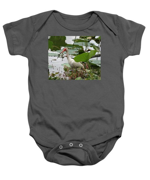 American White Ibis In Brazos Bend Baby Onesie by Dan Sproul