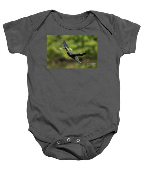 Anhinga Baby Onesie by Anthony Mercieca
