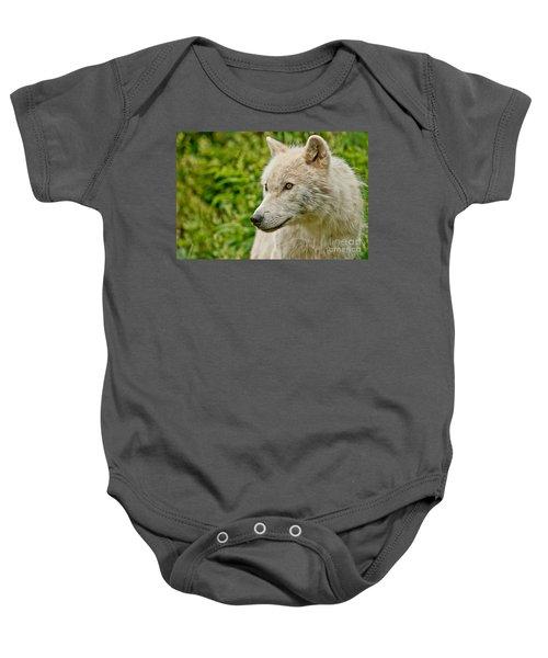 Arctic Wolf Pictures 241 Baby Onesie