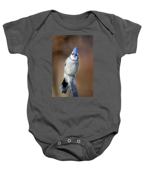 Backyard Birds Blue Jay Baby Onesie by Bill Wakeley