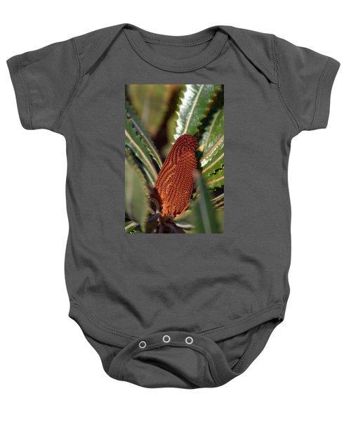 Baby Onesie featuring the photograph Banksia by Miroslava Jurcik