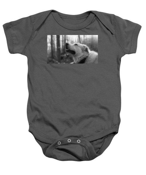 Bear Tooth Not Camera Shy Baby Onesie
