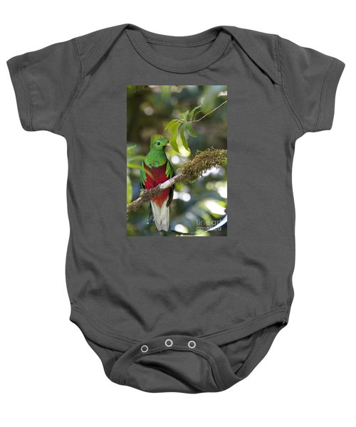 Beautiful Quetzal 1 Baby Onesie