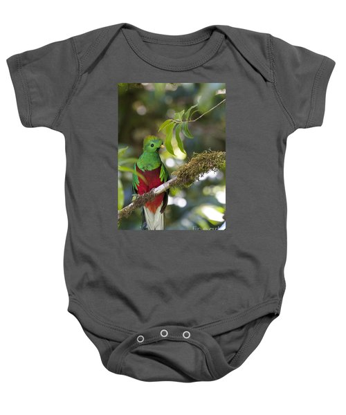 Baby Onesie featuring the photograph Beautiful Quetzal 1 by Heiko Koehrer-Wagner