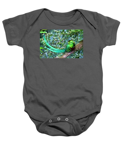 Baby Onesie featuring the photograph Beautiful Quetzal 3 by Heiko Koehrer-Wagner