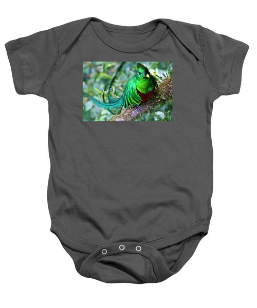 Beautiful Quetzal 4 Baby Onesie