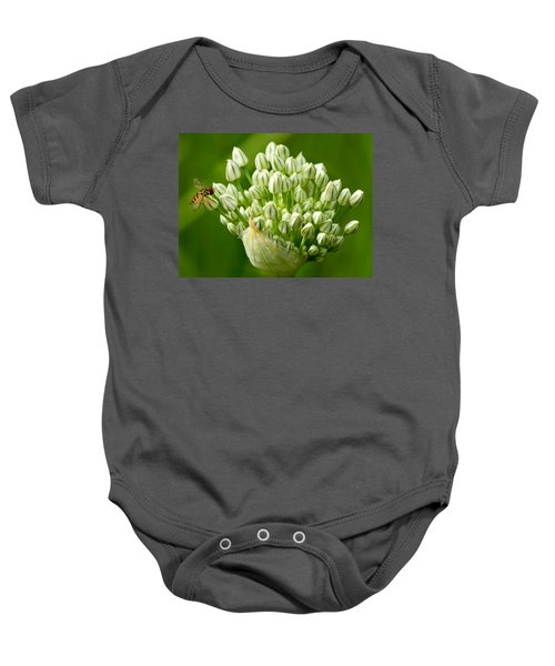Onion Bloom With Bee Baby Onesie