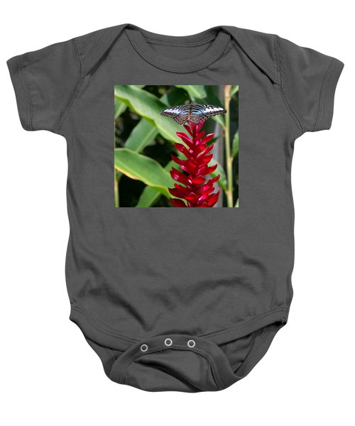 Brilliant Butterfly Baby Onesie