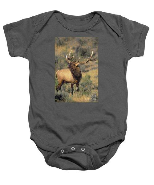 Bull Elk In Rut Bugling Yellowstone Wyoming Wildlife Baby Onesie