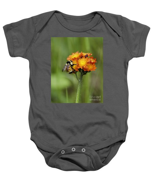 Bumble And Hawk Baby Onesie