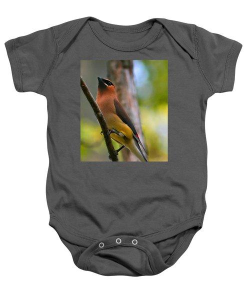 Cedar Wax Wing Baby Onesie by Roger Becker