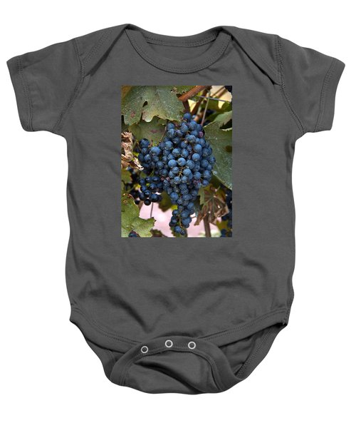 Concord Grapes Baby Onesie