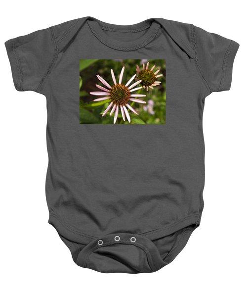 Cone Flower - 1 Baby Onesie