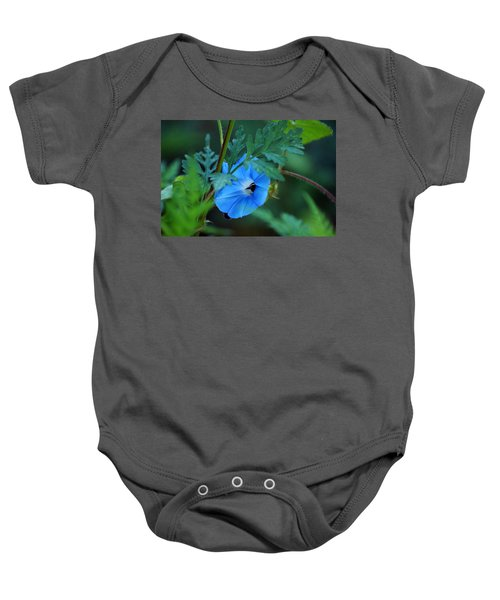 Country Blue Baby Onesie