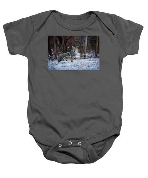 Coyote In The Meadow  Baby Onesie