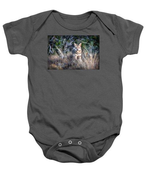 Coyote Stare Down Baby Onesie