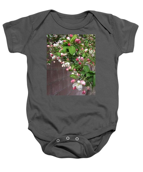 Crabapple Blossoms And Wall Baby Onesie