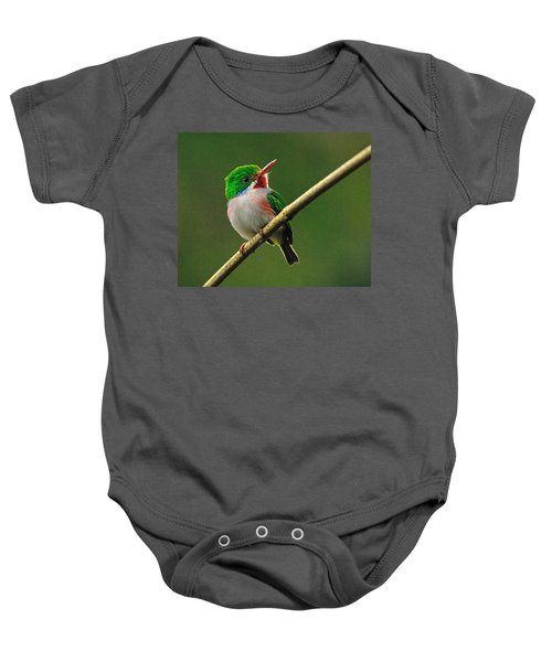 Cuban Tody Baby Onesie by Tony Beck