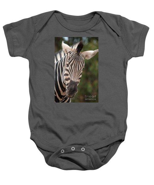 Curious Zebra Baby Onesie