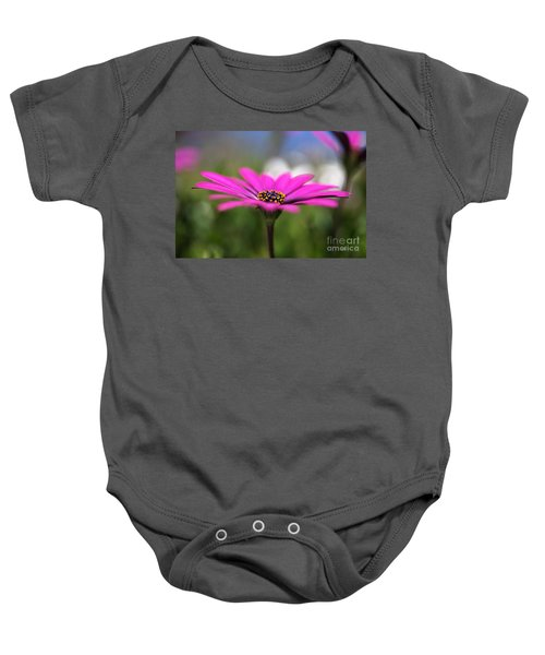 Daisy Dream Baby Onesie