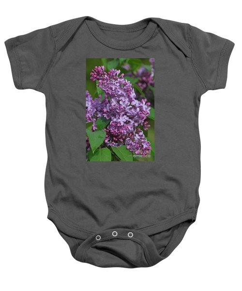 Dawns Lilacs Baby Onesie
