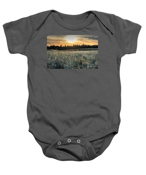 Evening Grasses In The Black Hills Baby Onesie