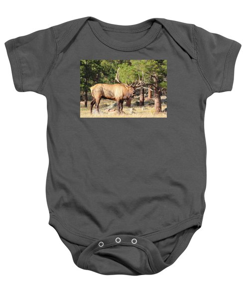 Evening Roundup Baby Onesie