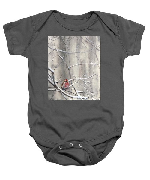 Eyeing The Feeder Alaskan Redpoll In Winter Baby Onesie