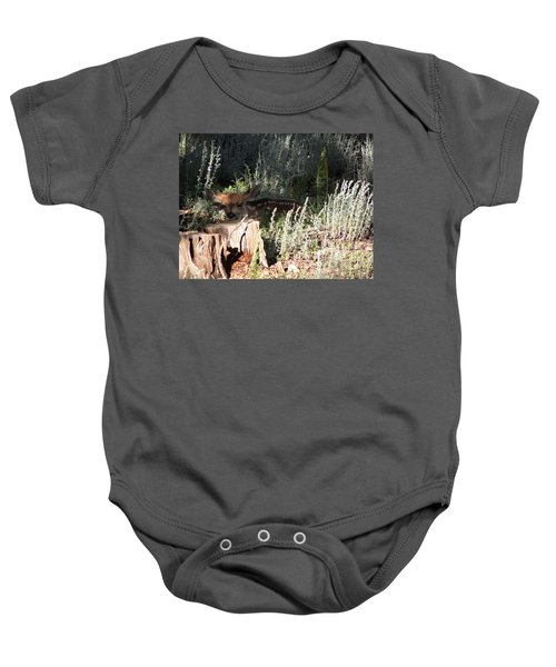 Fawn Front Yard Divide Co Baby Onesie