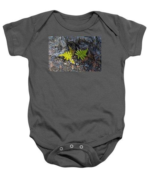 Ferns In Volcanic Rock Baby Onesie