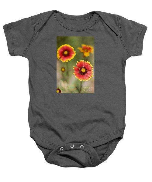 Gaillardia 'arizona Sun' Baby Onesie