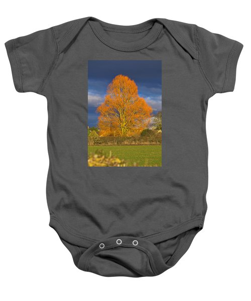 Golden Glow - Sunlit Tree Baby Onesie