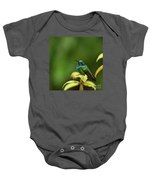 Baby Onesie featuring the photograph Green Violetear Hummingbird by Heiko Koehrer-Wagner