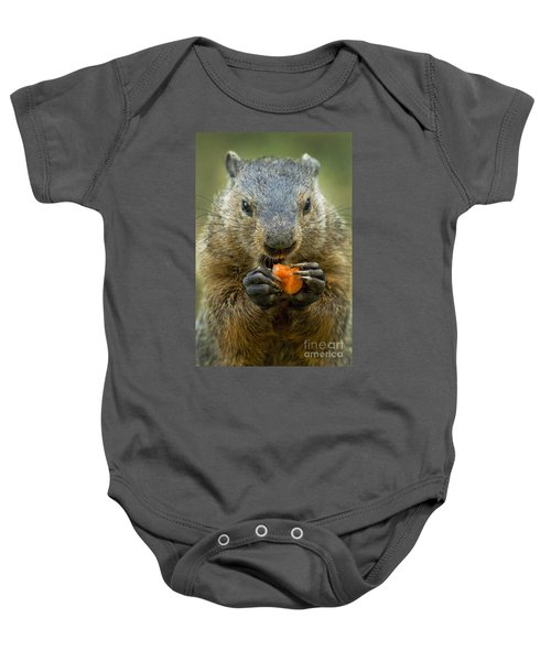 Groundhogs Favorite Snack Baby Onesie by Paul W Faust -  Impressions of Light
