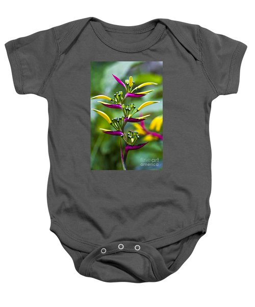 Baby Onesie featuring the photograph Heliconia Subulata II by Heiko Koehrer-Wagner
