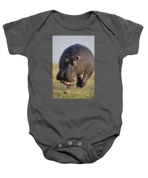 Hippopotamus Bull Charging Botswana Baby Onesie