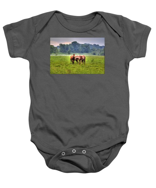 Baby Onesie featuring the photograph Horses Socialize by Jonny D