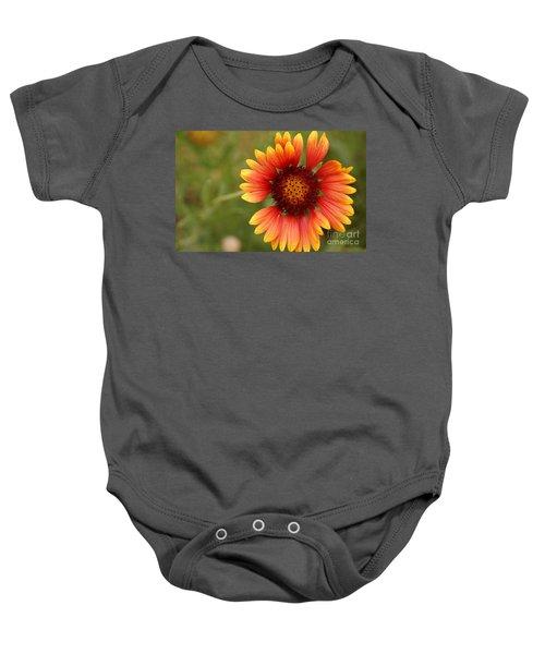 Indian Blanket Flower Baby Onesie