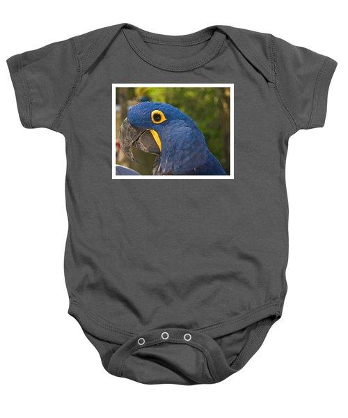 Indigo Macaw Baby Onesie
