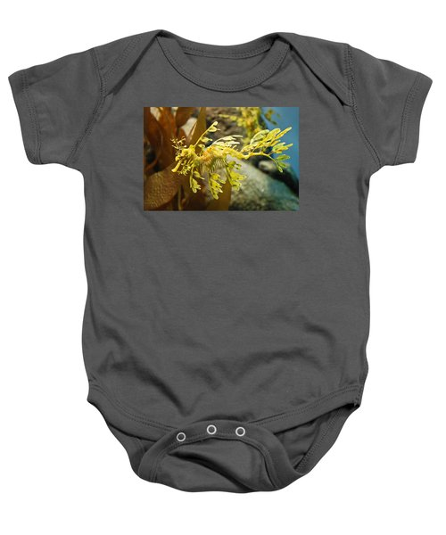 Leafy Sea Dragon Baby Onesie