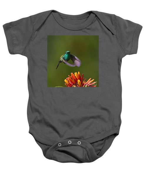 Baby Onesie featuring the photograph Little Hedgehopper by Heiko Koehrer-Wagner
