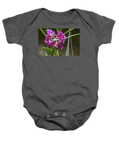 Magenta Orchids Baby Onesie