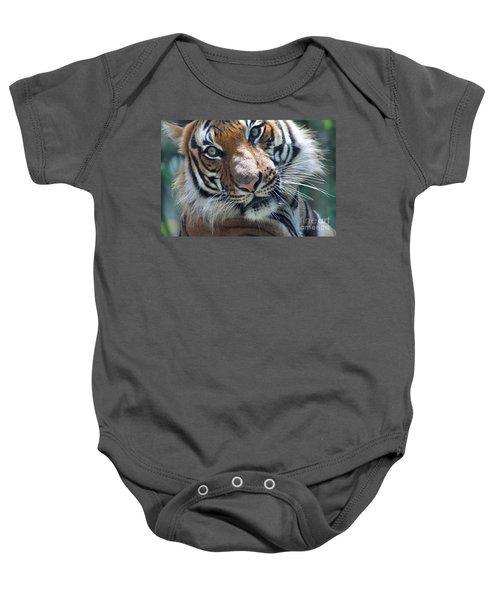 Malayan Tiger Baby Onesie