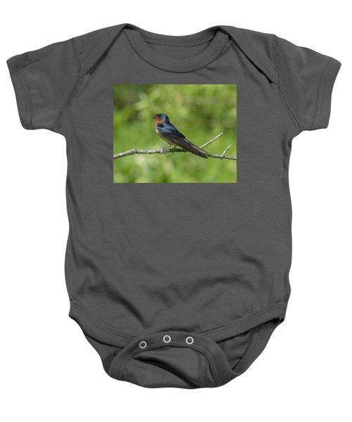 Male Barn Swallow Hirundo Rustica Dsb262 Baby Onesie