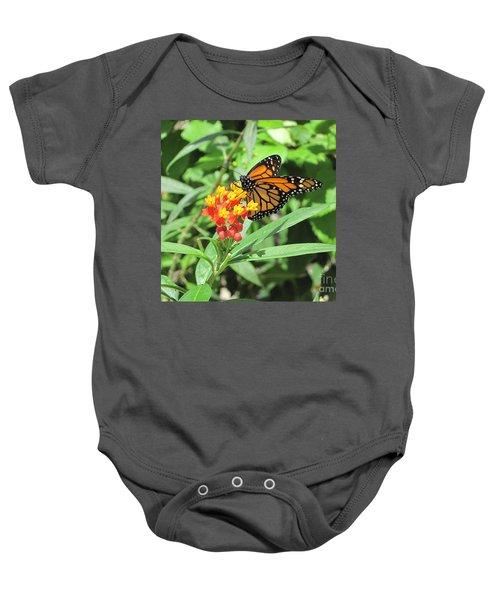 Monarch At Rest Baby Onesie